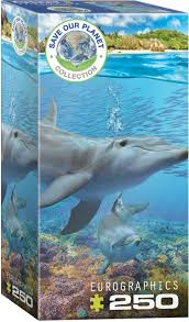 Dolphins (Save Our Planet Series)