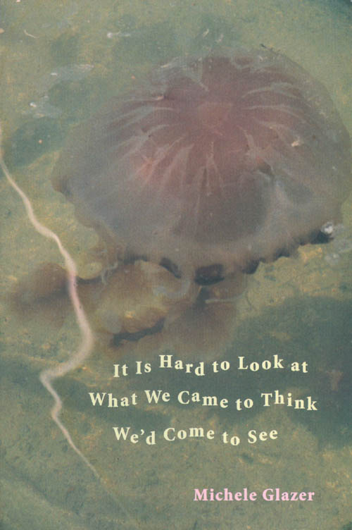 It Is Hard to Look at What We Came to Think We'd Come to See. Michele Glazer.