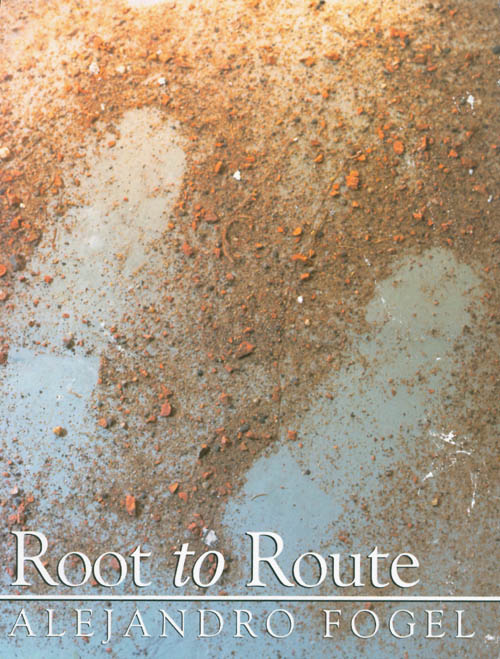 Root to Route: Inkas Road, Iowa, Rumbach Street. Alejandro Fogel.