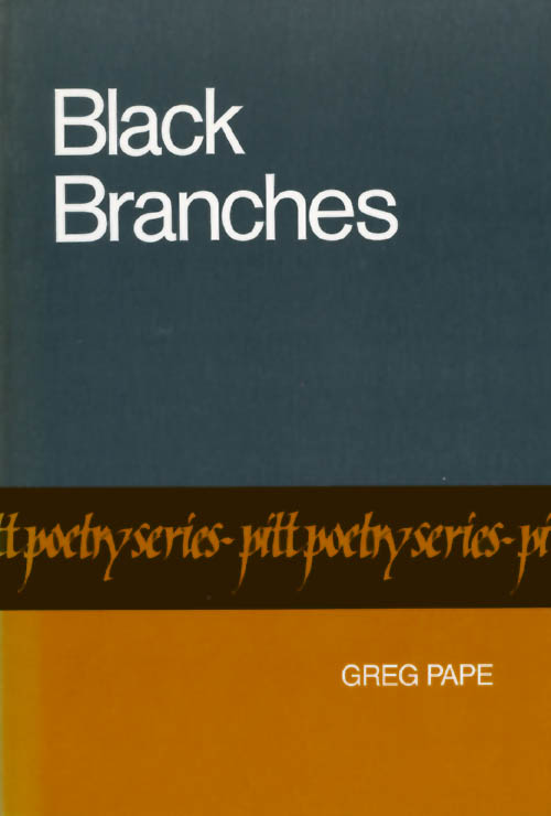 Black Branches. Greg Pape.