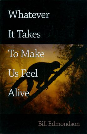 Whatever It Takes to Make Us Feel Alive. Bill Edmondson