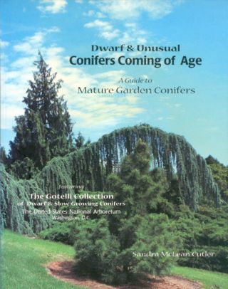 Dwarf & Unusual Conifers Coming of Age: A Guide to Mature Garden Conifers. Sandra M. Cutler